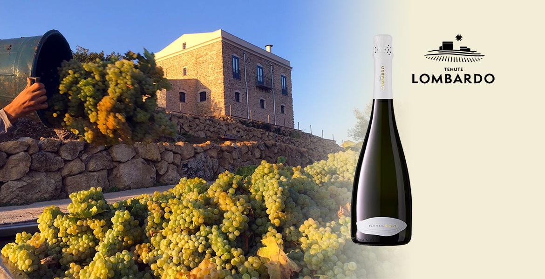 Les vins mousseux chez Lombardo