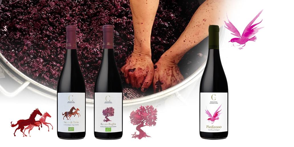 Vins Rouges Bruxelles BIOCANTINA GIANNATTASIO