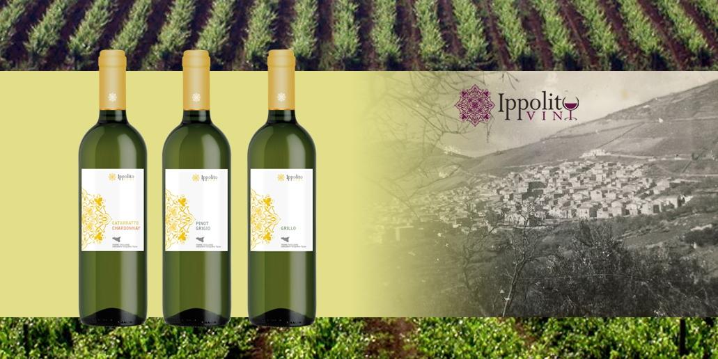 Vin blanc Bruxelles Ippolito Vini