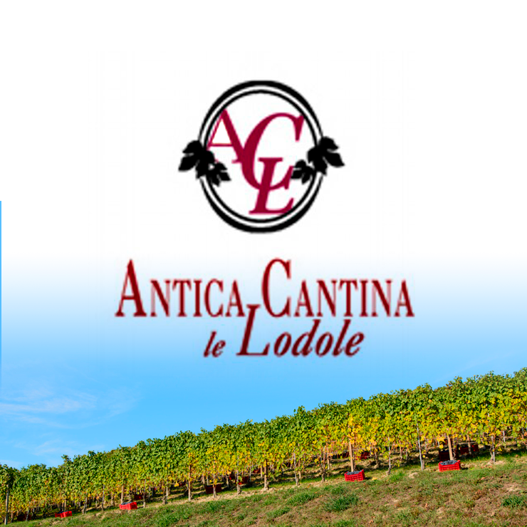 Rode wijnen bij Cantina Le Lodole